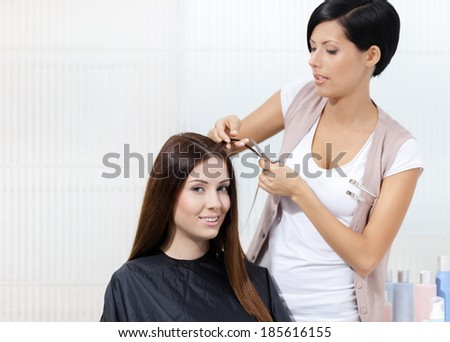Hairdresser cuts hair of woman in hairdresser's. Concept of fashion and beauty - stock photo
