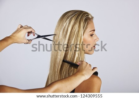 hairdresser cutting long blond hair of a young woman on gray background - stock photo