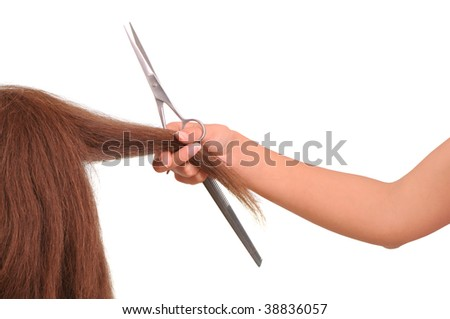 hairdresser cutting young woman