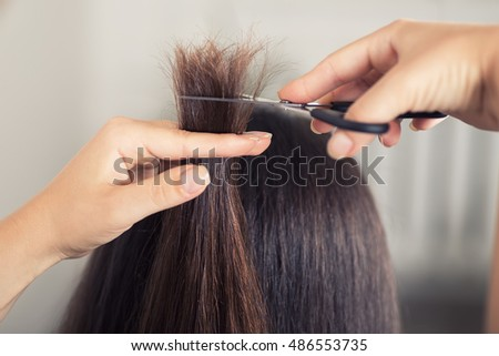 Hairdresser trimming brown hair with scissors. Hairdresser do haircut closeup. Women's haircut. Getting rid of those split ends. Cropped shot of female hairdresser cutting hair with scissors.