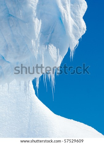 hairy icicles dripping down ice - stock photo
