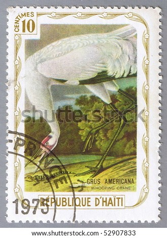 HAITI - CIRCA 1975: A stamp printed in Haiti shows Whooping crane, series devoted to the birds, circa 1975