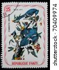 HAITI - CIRCA 1970s: A post stamp printed in Haiti shows Blue Jay, series  circa 1970s - stock photo