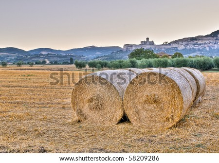 Hale bales and the Basilica of St. Francis, Assisi in early morning - stock photo