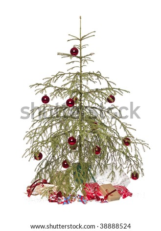 half dead christmas tree isolated on a white background - Half Christmas Trees