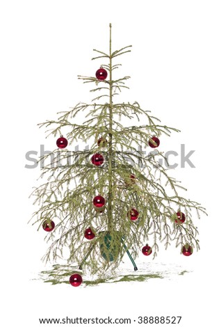 Half dead christmas tree isolated on a white background - stock photo
