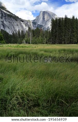 Half dome , Yosemite national park, USA - stock photo
