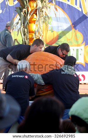 HALF MOON BAY, CA - OCTOBER 2015 - Pumpkin Festival workers load a giant pumpkin onto the scale at the 45th annual Pumpkin Weigh-Off contest in Half Moon Bay, California.  - stock photo