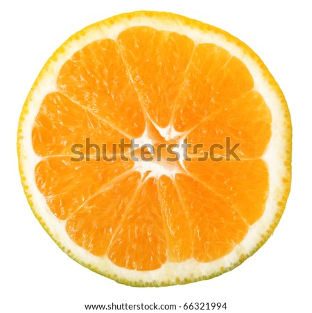 juicy oranges isolated on white juicy oranges isolated on white