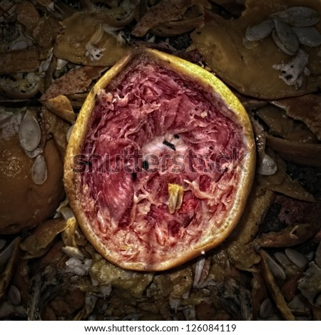 Half of a squeezed red grapefruit on a Compost Heap/Artistically alienated to create a grungy somber atmosphere. - stock photo