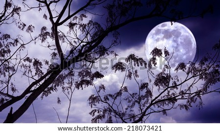Halloween background. Spooky forest with full moon and dead trees - stock photo