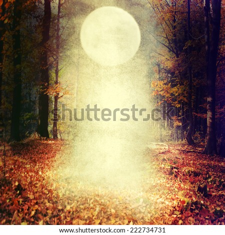 Halloween background with moon. - stock photo