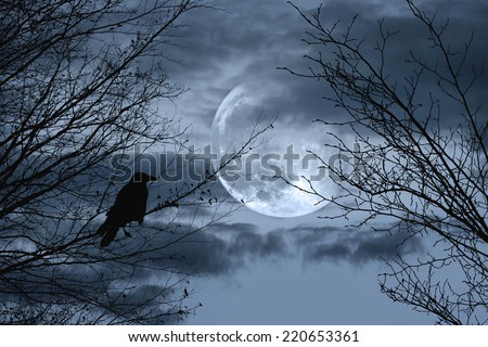 Halloween background with  spooky forest and full moon - stock photo