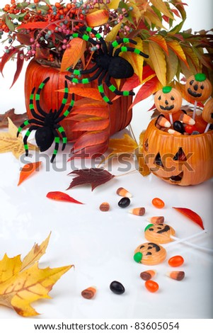 Halloween candy scattered around, fall berries, leaves and spiders. - stock photo