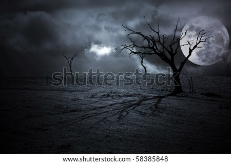 Halloween dark scenery with naked trees, full moon and clouds - stock photo