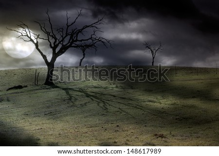 Halloween dark scenery with naked trees, full moon and overcast night sky (other versions available in my portfolio) - stock photo