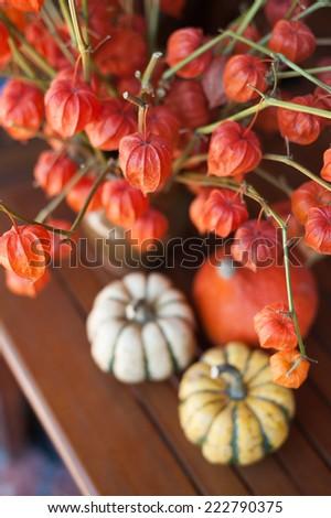 Halloween decoration with pumpkin - stock photo