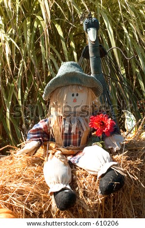 Halloween decoration with scarecrow and bird. - stock photo