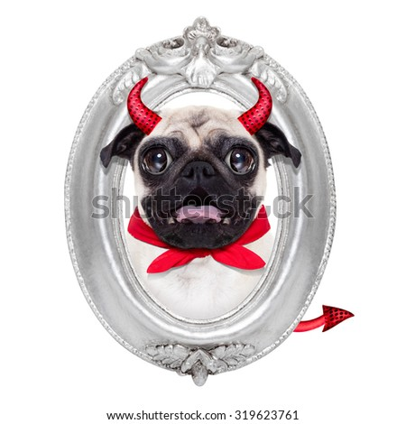 halloween devil pug dog  inside a grey silver frame on the wall, isolated on white background - stock photo