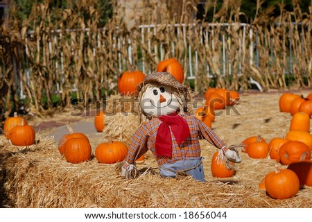 Halloween display of pumpkins and scarecrow