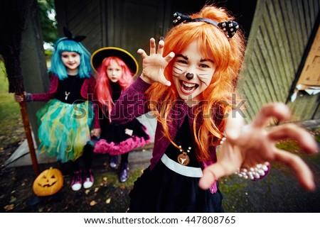 Halloween fright - stock photo