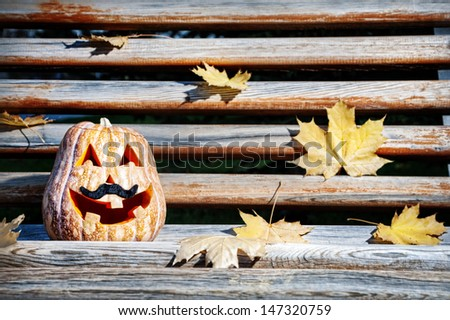 Halloween funny pumpkin with moustache on the wooden bench in the park - stock photo