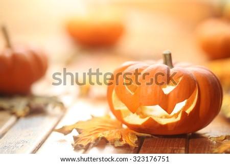 Halloween jack o' lantern background - stock photo