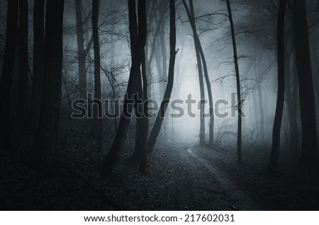 halloween night in dark spooky forest - stock photo