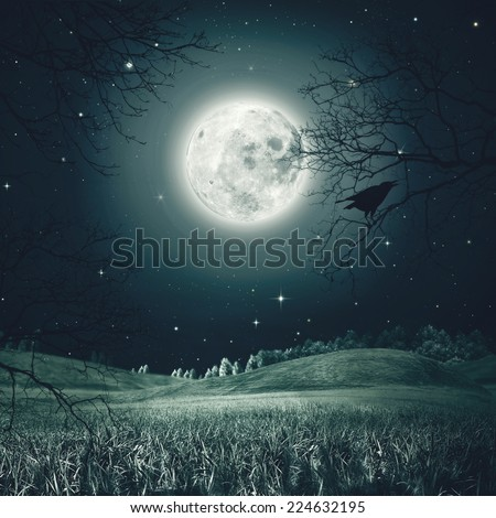 Halloween night on the spooky meadow. Abstract holidays backgrounds - stock photo