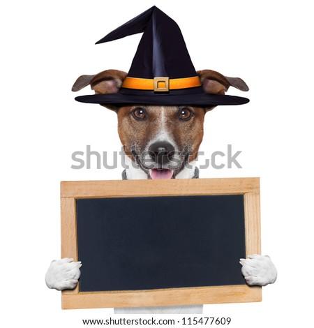 halloween placeholder banner dog - stock photo