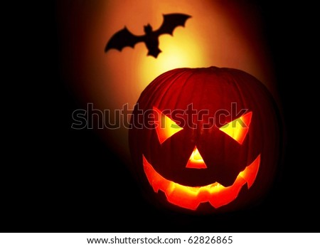 Halloween pumpkin and bat isolated on black background
