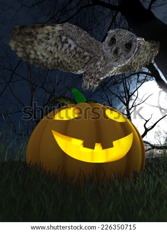 Halloween pumpkin and owl in night forest holiday background - stock photo