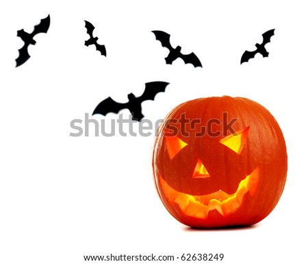 Halloween pumpkin & bats isolated on white - stock photo