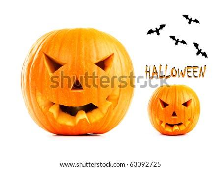 Halloween pumpkin & bats isolated on white background - stock photo