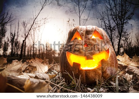 Halloween pumpkin glowing inside in dark autumn forest - stock photo