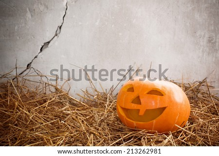 Halloween pumpkin on background old wall - stock photo