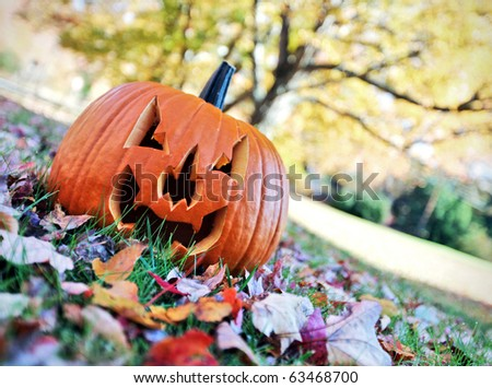 Halloween pumpkin on leaves in woods amongst leaves - stock photo