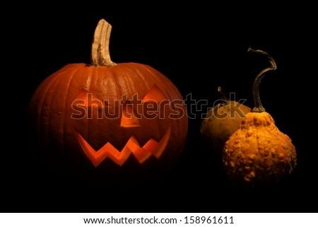 Halloween pumpkin shiny from - stock photo