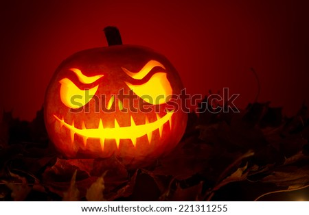 Halloween pumpkin with leafs on red background - stock photo