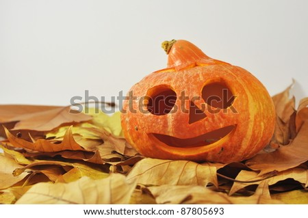 halloween pumpkins isolated on white - stock photo