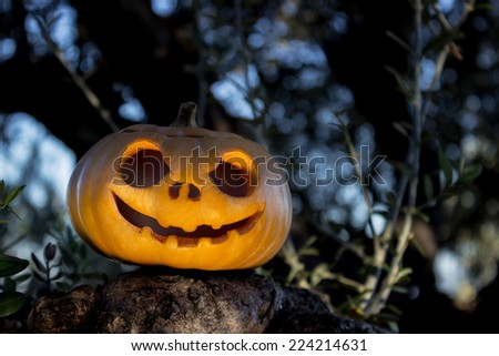 Halloween scary pumpkin jack-o-lantern with a smile in green tree thicket on the rock reflection - stock photo