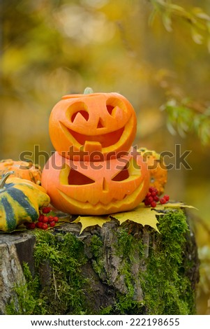 Halloween scary pumpkin with a smile in autumn forest - stock photo