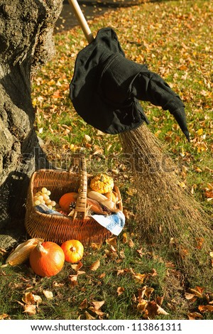 Halloween scene with witch's hat, broom and pumpkin basket in the park - stock photo