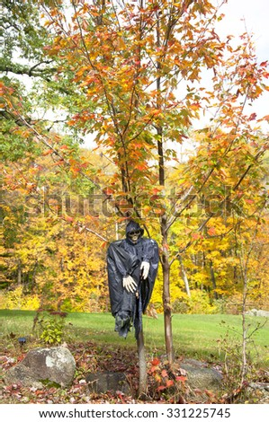 Halloween skeleton hanging on a tree in Vermont, USA - stock photo