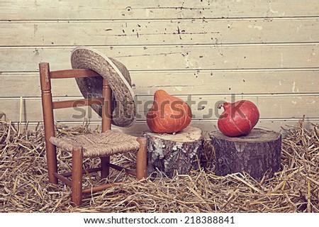 Halloween still life - stock photo