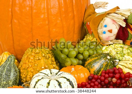Halloween still life with blue wine bottle with cork, grapes, gourds, pumpkins, candle, scarecrow and leaves.