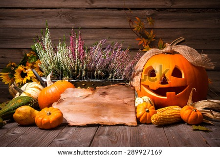 Halloween still life with pumpkins and space for your Halloween holiday text - stock photo