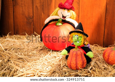 Halloween witch doll on a bale of hay
