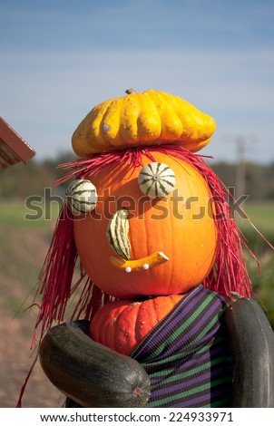 Halloween witch made with different types of pumpkins - stock photo