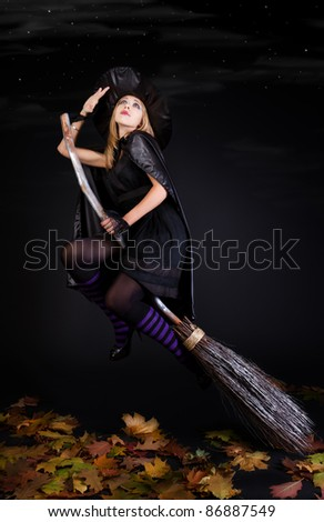 Halloween witch on a broom - stock photo